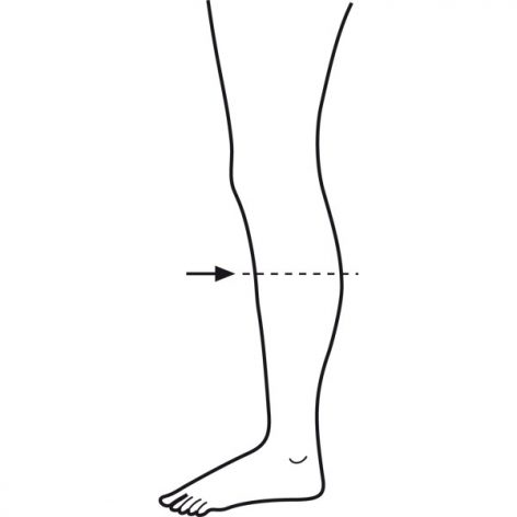 Calf Measurement